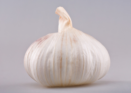Single whole white garlic on white background. Studio shoot. Stock Photo