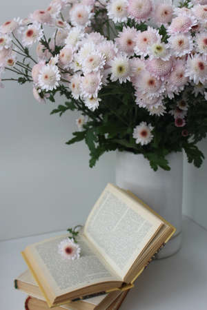 Bouquet and books on a white background