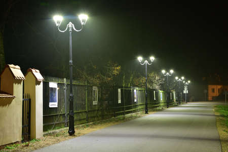Pedestrian alley after dark illuminated with LED lamps. Trees at night.