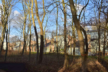 Summer houses among trees are waiting for people. Spring. Day.