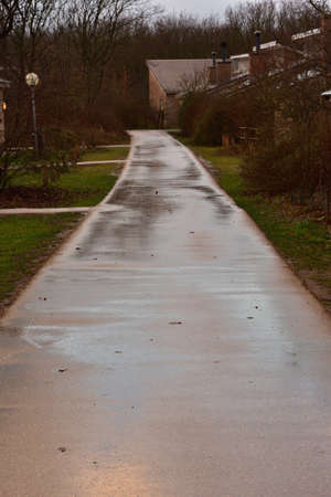 Road between houses and trees after the rain. Reflections of lights. Spring. Stockfoto