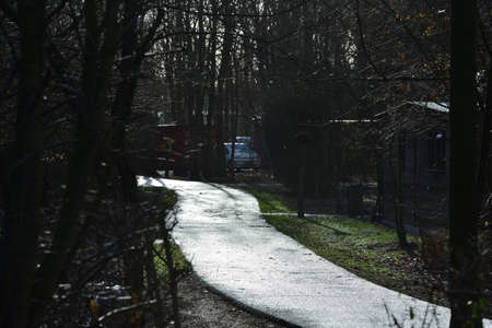 Alley between houses and trees after the rain. The light reflects off the wet surface. Spring. Archivio Fotografico