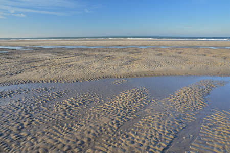 Sea shore at low tide on a sunny day. Summer. 免版税图像