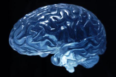 brain model aganist black background Stock Photo - 2840392