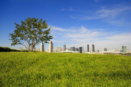 San Diego Downtown skyline  photo