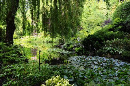 Formal garden Фото со стока