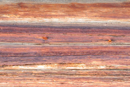 Detailed view of pattern and bark on the side of an old log on the sunny morning before Spring coming Stok Fotoğraf