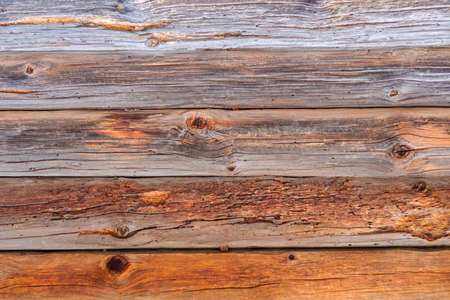 Detailed view of pattern and bark on the side of an old log on the sunny morning before Spring coming Foto de archivo