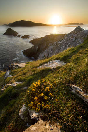 scenic portrait of irish blasket islands at sunset