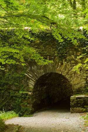 old medieval bridge arch in forest with gravel road photo