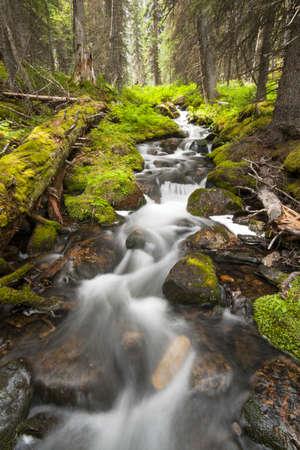 seidigen Wasser fließt über Felsen in einem kleinen Bach