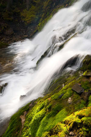 little waterfall in forest, long exposure of flowing water  photo