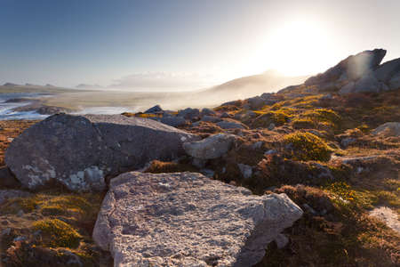 sun rising over hill on irish west coast, rocks and flowers in foreground Stock Photo