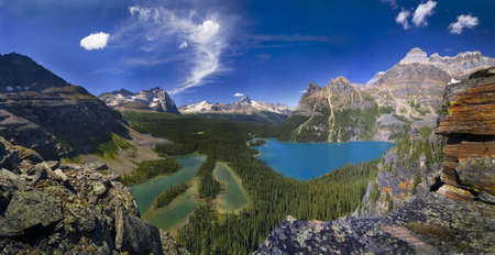 scenic lake ohara in canadian rockies seen from above