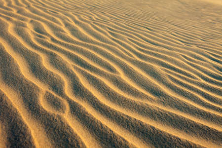 Ripples of Sand at beach with shallow light, island Baltrum,East Friesland,Germany