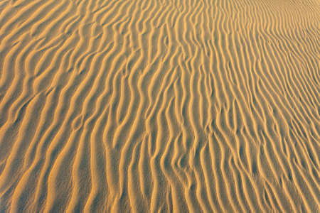 sidelit: Ripples of Sand at beach with shallow light, island Baltrum,East Friesland,Germany
