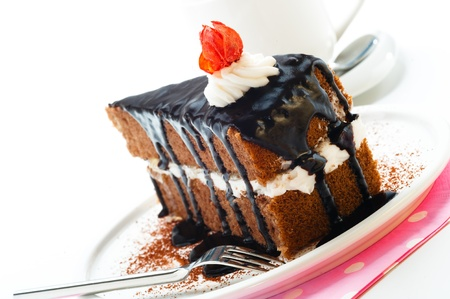 A piece of chocolate cake with vanilla cream photo
