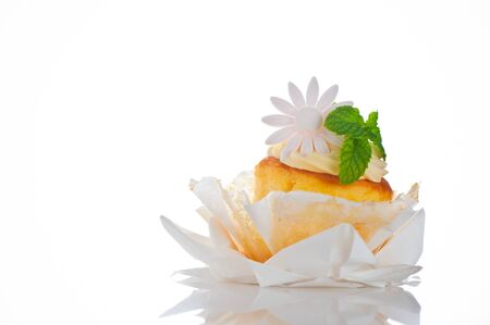 Cupcake with vanilla cream mint leaf and sugar flower on a white background Stock Photo - 11537121