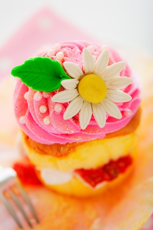 A two layer cupcake with pink and white buttercream sugar flower and gold powder on a white background as a studio shoot Stock Photo - 12601318
