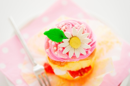 A two layer cupcake with pink and white buttercream sugar flower and gold powder on a white background as a studio shoot Stock Photo - 12601323