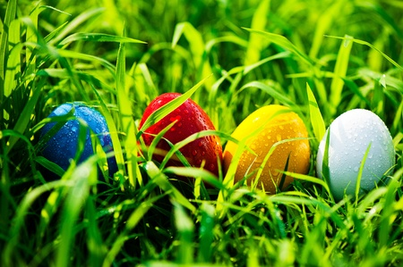 Four colored easter eggs on the meadow
