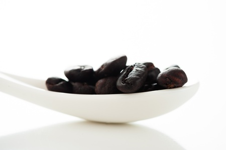 Coffee beans in a white spoon on white background with light reflex as a studio shot photo