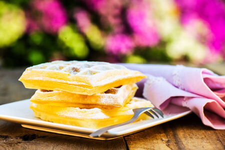 fresh waffle on a white plate and a garden  photo