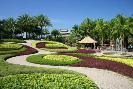 Un jardin tropical Banque d'images - 7111574