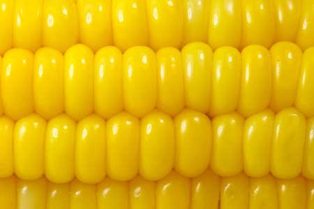 Sweet corn background Stock Photo - 7513299