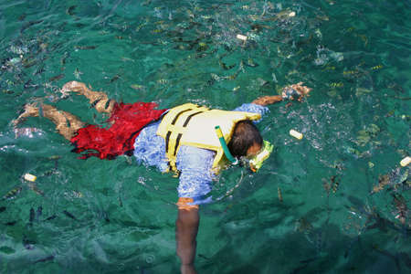 A man is Snorkeling in Tropical Lagoon Stock Photo - 7542271