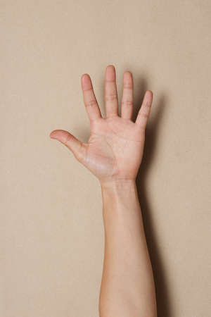 Hand symbol Stock Photo - 12134401