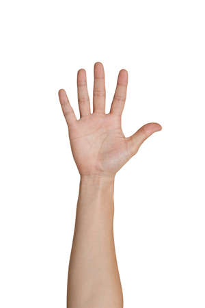 Five fingers of female hand Stock Photo - 12402581