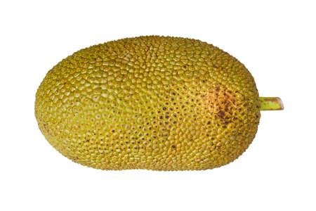 Jack fruit isolé sur fond blanc Banque d'images - 19293353