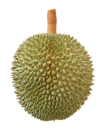 Close-up van durian fruit dat op wit wordt geïsoleerd