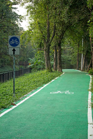 Biking road in green forest of a city park