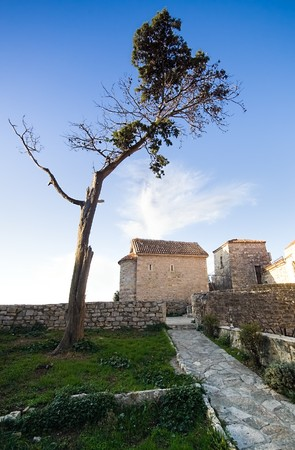 budva: An empty narrow alley in the Old Town of Budva, Montenegro. Green grass, old tree and blue sky above. Stock Photo