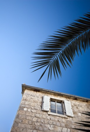 Holiday appartment window and a palm tree branch with blue sky in the background