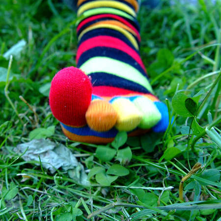 colourful toesocks in lawn