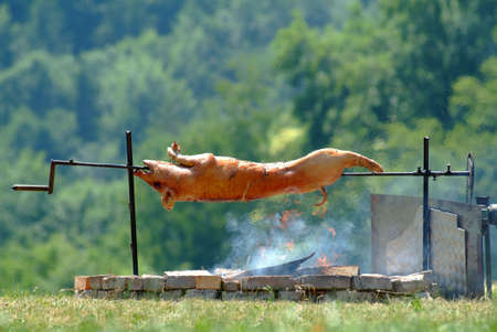 suckling pig: picture of a suckling pig on spit outside