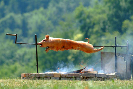 spit: a hot suckling pig on spit outside