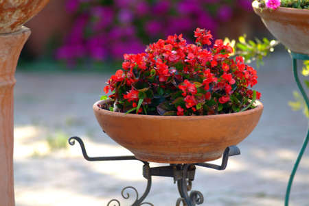 a big brown antique flowerpot of clay Stock Photo - 758012