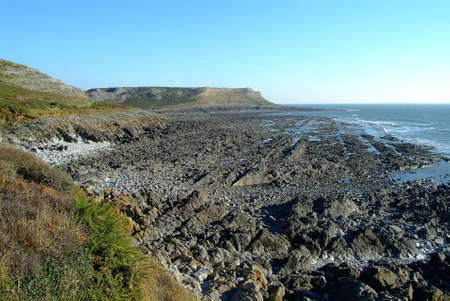 the coast during sunny corner at low tide