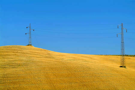 pole on gold field with blue sky Stock Photo