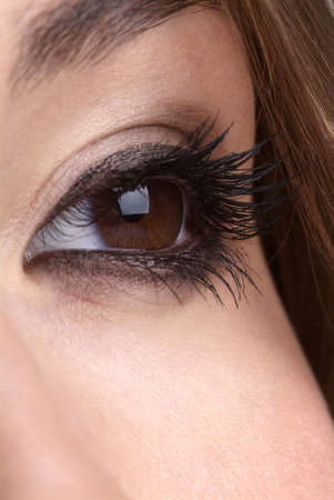 detail of a made up brown eye and brow