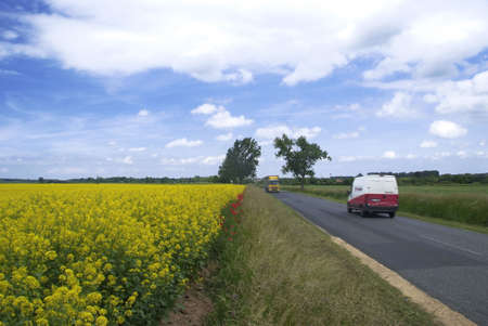 two driving vehicles beside blooming colzafeeld under blue sky