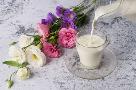 Milk in a glass and a jug, on a background is a gray concrete background and flowers. Stock fotó
