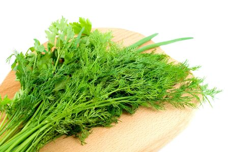 dill parsley spice herb  Stock Photo - 4597851