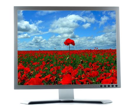 silver monitor with red poppies on a white background photo