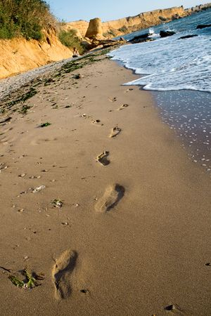 Foot steps in sand beach Stock Photo - 6251079