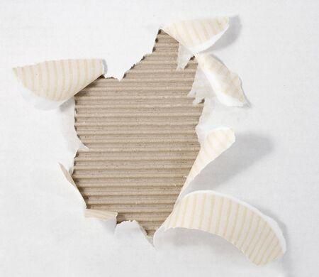 torn corrugated cardboard on white background photo